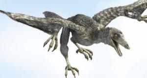 Доисторические птицы: раньше, чем археоптерикс