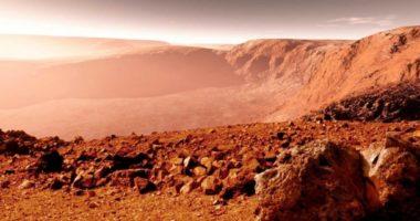 Живые бактерии найдены в самой сухой пустыне: жизнь на Земле и на Марсе