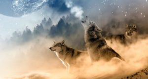 Истории моего рода. В сердце волчьем страха нет?