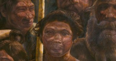 Чем денисовский человек отличается от Homo sapiens?