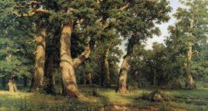 Древобог, Боровик и его подданные. Где живут лесные духи?