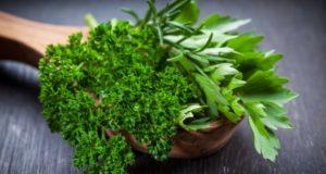 Чем полезны ароматные травы, используемые в приготовлении пищи?