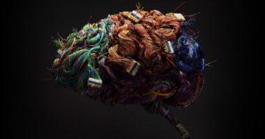 Опыты на людях: как исследуют человеческий мозг