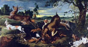 Рогатые, безрогие, клыкастые… Какими бывают олени?