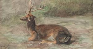 Что может вырасти на голове у оленя? Христианская символика