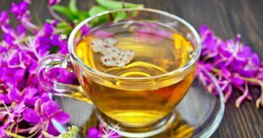 Как приготовить ферментированный иван-чай?