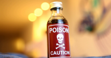 Как смертельный яд помогает лечить болезни: российская разработка