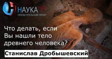 Что делать, если вы нашли тело древнего человека?