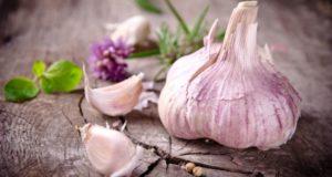 Что мы знаем о чесноке? Интересные факты о знакомом овоще