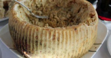 8 необычных методов использования червей в промышленности и быту
