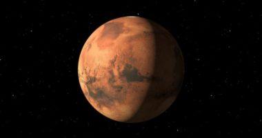 Чем станут питаться земляне на Марсе?
