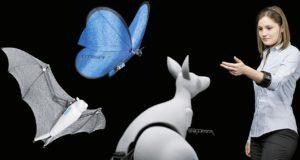 От летучей мыши до медузы: бионические роботы XXI века