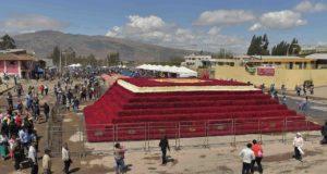 В Эквадоре сделали гигантскую цветочную пирамиду